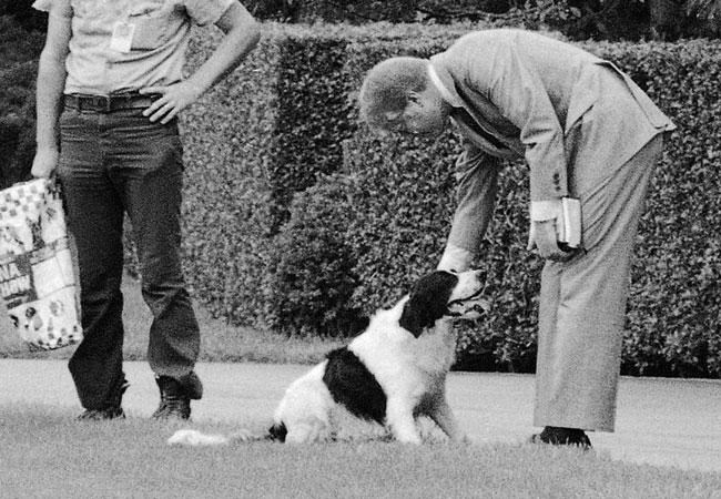 Jimmy Carter (1977-81) brinca com o border collie Grits nos jardins da Casa Branca, em 1978. O cão foi dado a Amy, a filha do presidente, por um de seus professores.