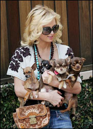 Dona famosa: Paris Hilton (celebridade)