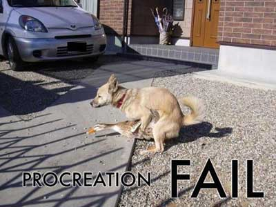procreationfail